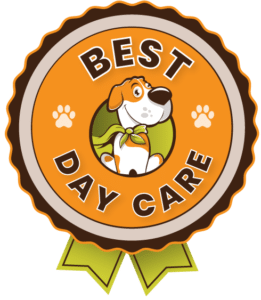 Best Day Care Badge