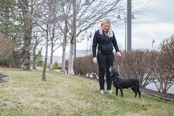 image-dogdaycare3